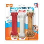 Nylabone Regular Holiday Puppy Starter Kit Dog Toy