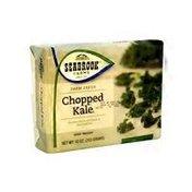 Seabrook Farms Chopped Kale