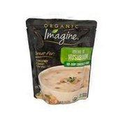 Imagine Creme Of Mushroom Organic Non-dairy Condensed Soup