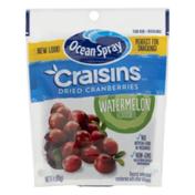 Ocean Spray Craisins Watermelon