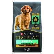 Purina Pro Plan High Protein Puppy Food Shredded Blend Chicken & Rice Formula