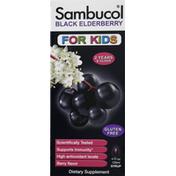 Sambucol Black Elderberry, Berry Flavor, Syrup, For Kids