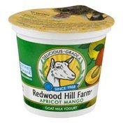 Redwood Hill Farm Goat Milk Yogurt Apricot Mango