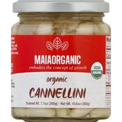 Maia Cannellini, Organic