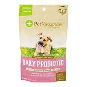 Pet Naturals Of Vermont Daily Probiotic Chews - 60 CT