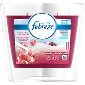 Febreze Candle Febreze Scented Candle Fresh Twist Cranberry Air Freshener (1 Count, 4.3 oz) Air Care