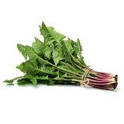 Organic Red Dandelion Greens Bunch