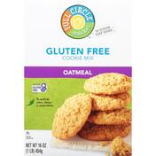 Full Circle Cookie Mix, Gluten Free, Oatmeal