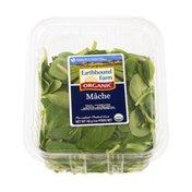 Earthbound Farms Salad Organic Mache Mix