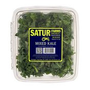 Satur Farms Mixed Kale