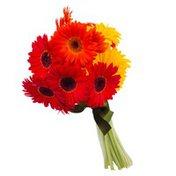 Mini Gerbera Bouquet