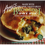 Amy's Kitchen Pot Pie, Broccoli with Cheddar Cheese Sauce