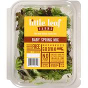 Little Leaf Farms Lettuce, Baby Spring Mix