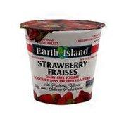 Earth Island Strawberry Yogurt