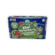 Nature's Nectar Strawberry Kiwi Juice Pouches