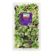 Earthbound Farm Organic Triple-washed Spring Mix