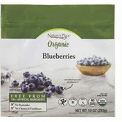 Nature's Place Frozen Organic Whole Blueberries