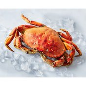 Whole Cooked Fresh Crab Dungeness