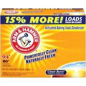 Arm & Hammer 2011 Historical Clean Burst 94 Loads Powder Laundry Detergent