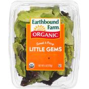 Earthbound Farms Organic Sweet & Crisp Little Gems Lettuce