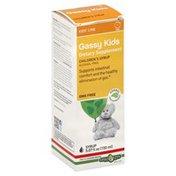 Erba Vita Gassy Kids, Children's Syrup