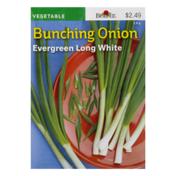 Burpee Bunching Onion Seeds