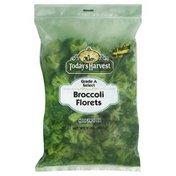 Today's Harvest Broccoli Florets, Grade A Select, Bag
