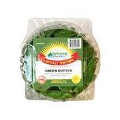 Wellspring Harvest Green Butter Salanova Lettuce