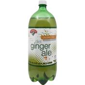 Hannaford Diet Ginger Ale