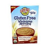 Earth's Best Gluten Free Wholesome Morning Hot Cereal