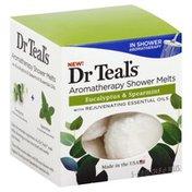 Dr. Teal's Shower Melts, Aromatherapy, Eucalyptus & Spearmint