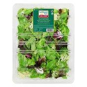 Earthbound Farm Organic Organic Herb Blend