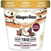 Haagen-Dazs Crispy Trio Layers Dark Chocolate Coconut Cookies & Crème Dessert