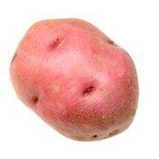 Red Creamer Potato