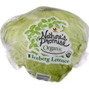 Nature's Promise Organic Iceberg Lettuce
