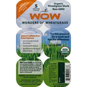 Wow! Wheatgrass Shots, Organic