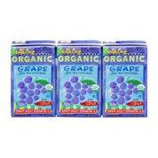 Santa Cruz Grape Drink - 3 CT