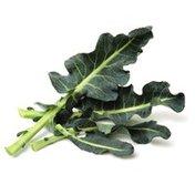 Foxy Organic BroccoLeaf