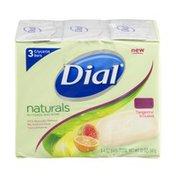 Dial Naturals Glycerin Bar Soap Tangrine & Guava - 3 CT