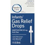 Signature Gas Relief, Infants', 20 mg, Drops