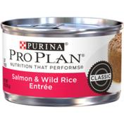 Purina Pro Plan Pate Wet Cat Food, Salmon & Wild Rice Entree
