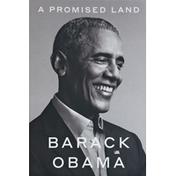 Barack Obama Book, A Promise Land