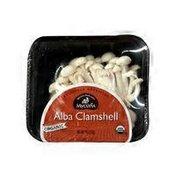 Mycopia Organic Alba Clamshell Mushrooms