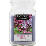 Enticing Aromas Candle, Blooming Lilac, Soy Blend, Scented