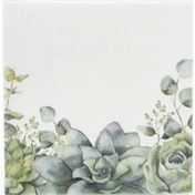CR Gibson Beverage Napkins, Succulents, 3-Ply