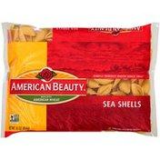 American Beauty Sea Shells