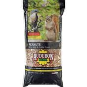 Audubon Park Wild Bird & Critter Food, Peanuts