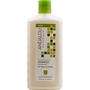 Andalou Naturals Shampoo, Silky Smooth, Exotic Marula Oil