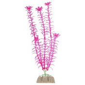 Glo Fish Large Pink Plant
