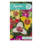 Garden State Bulb Company Tigridia Mixed